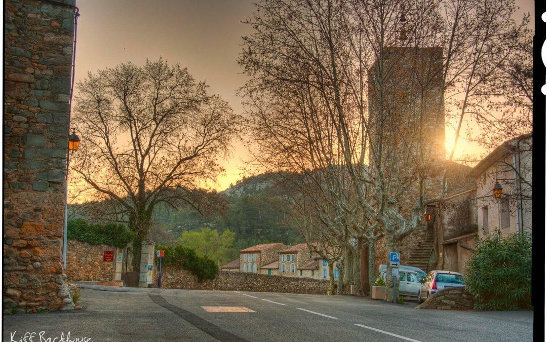 Golden Morning Sunlight